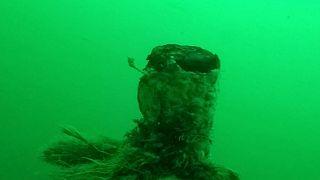 Βρέθηκε γερμανικό υποβρύχιο του Α' Παγκοσμίου Πολέμου - BINTEO
