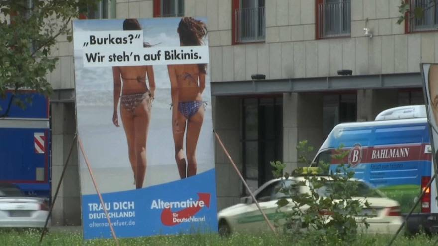 Législatives en Allemagne : l'AfD veut jouer les arbitres