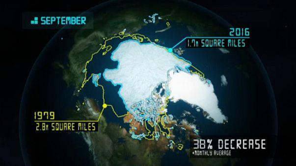 I ghiacci si ritirano. Ma non è (solo) colpa del clima