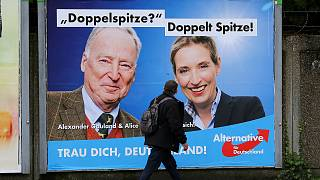 How the far-right Alternative for Deutschland became Germany's third-biggest party