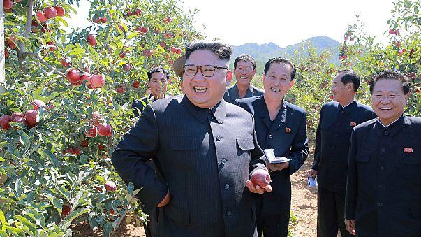"""كوريا الشمالية تصف تهديدات ترامب ب""""نباح كلب"""""""