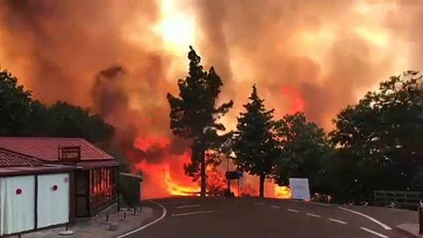 Hatalmas erdőtűz pusztít Gran Canarián