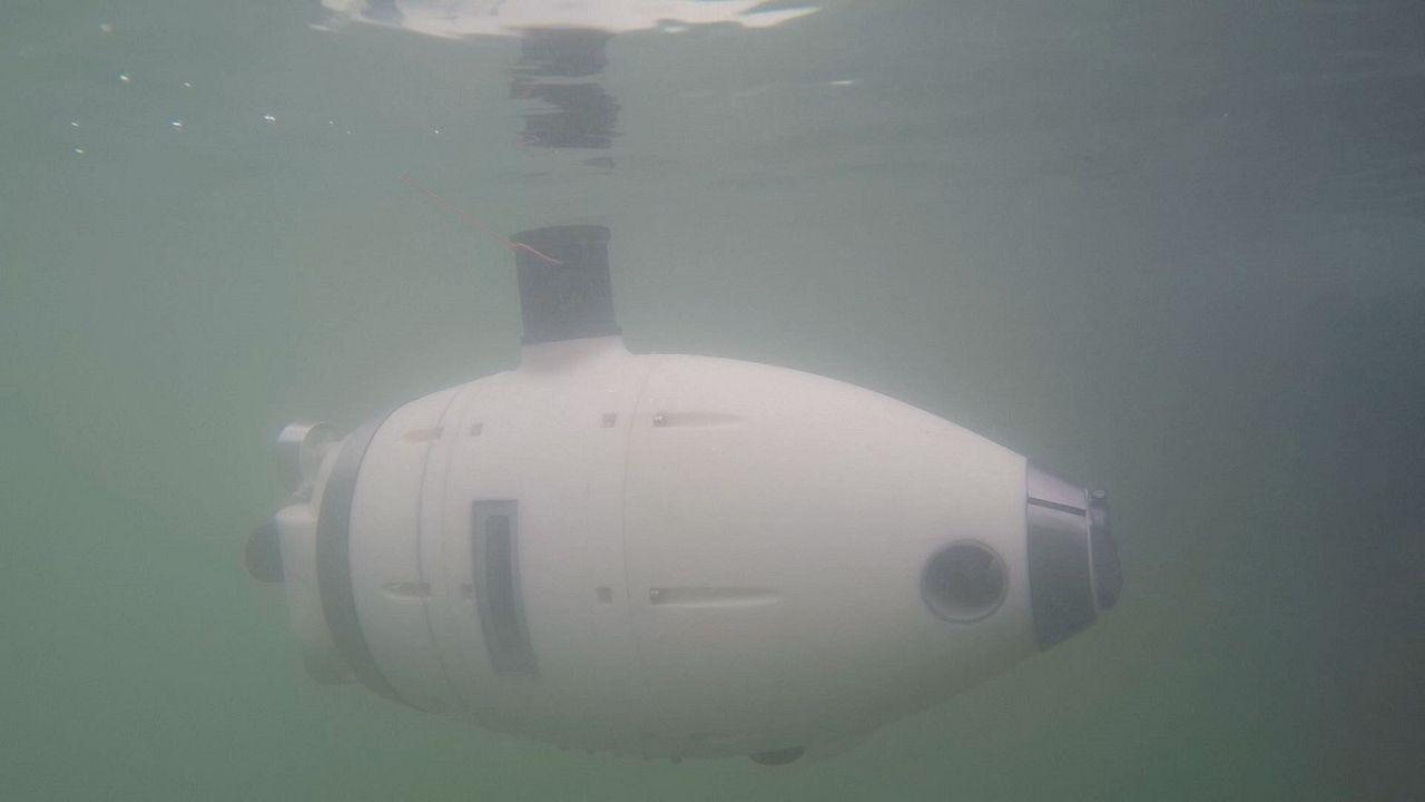 Roboter-Schwarm im trüben Wasser von Venedig