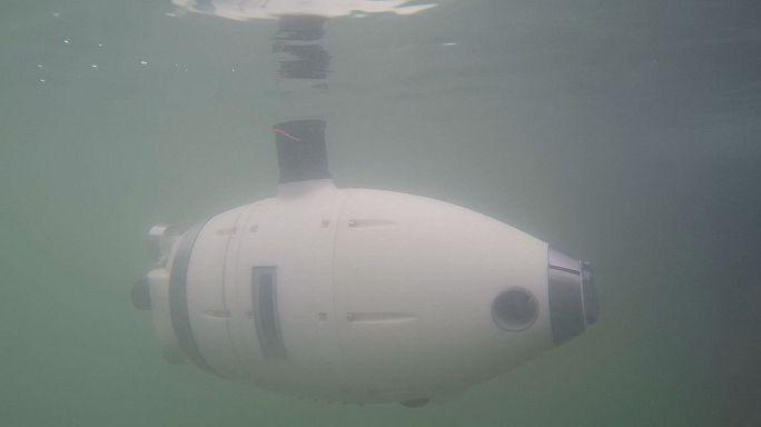 روبوتات رصد البيئة تحت المائية