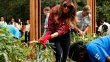 Down-to-earth Melania? First Lady plants, harvests in White House Garden