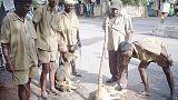 مهربون يسرقون كلابا من أصحابها لبيعها كلحوم في الهند