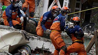 Rescatan con vida a un perro seis días después del terremoto en México