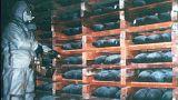 Russia: completata la distruzione delle armi chimiche