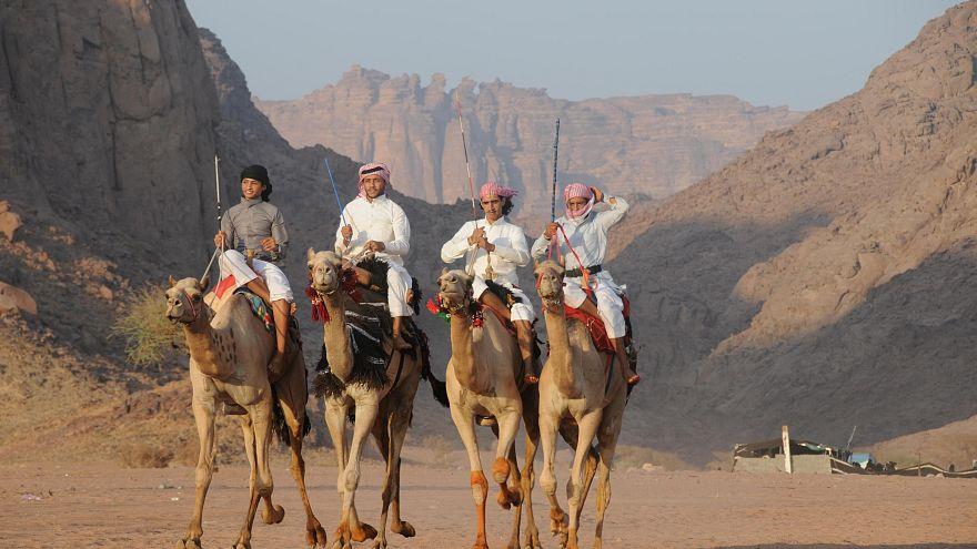 بعد الأبقار من السعودية.. الإمارات تعيد مئات الجمال إلى قطر