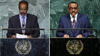 'Ethiopia had to back Eritrea sanctions lifting as head of UNSC'