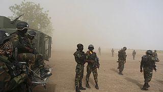 Cameroun : deux militaires tués dans l'explosion d'une mine