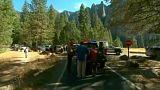 Halálos sziklaomlás a Yosemite Nemzeti Parkban