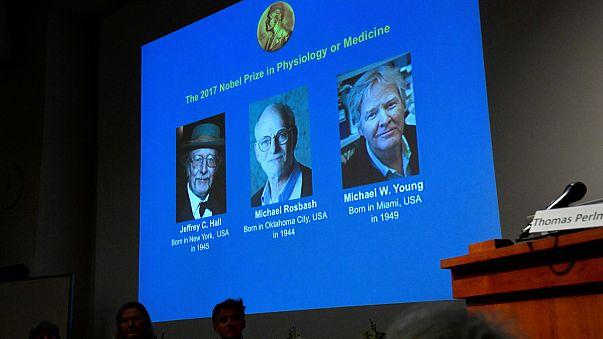 US scientists win Nobel medicine prize for work on circadian rhythms