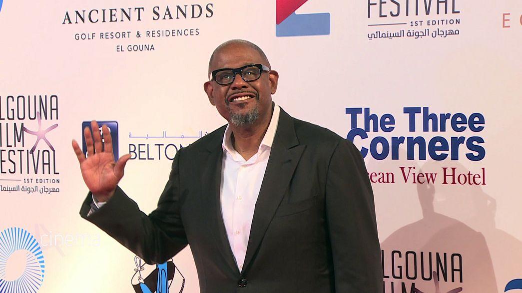 Festival de Cinema El Gouna e o glamour de Hollywood no Mar Vermelho