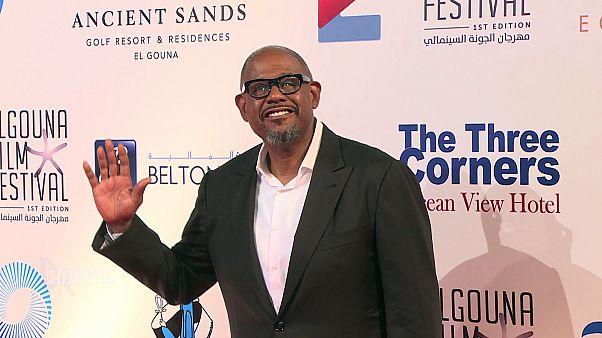 """مهرجان """"الجونة"""" السينمائي العالمي في مصر يختتم أعماله بتوزيع الجوائز"""