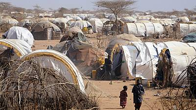 UN cuts food rations for refugees in Kenya by 30 percent