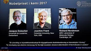 Megvan az idei Nobel-díjas kémikus trió