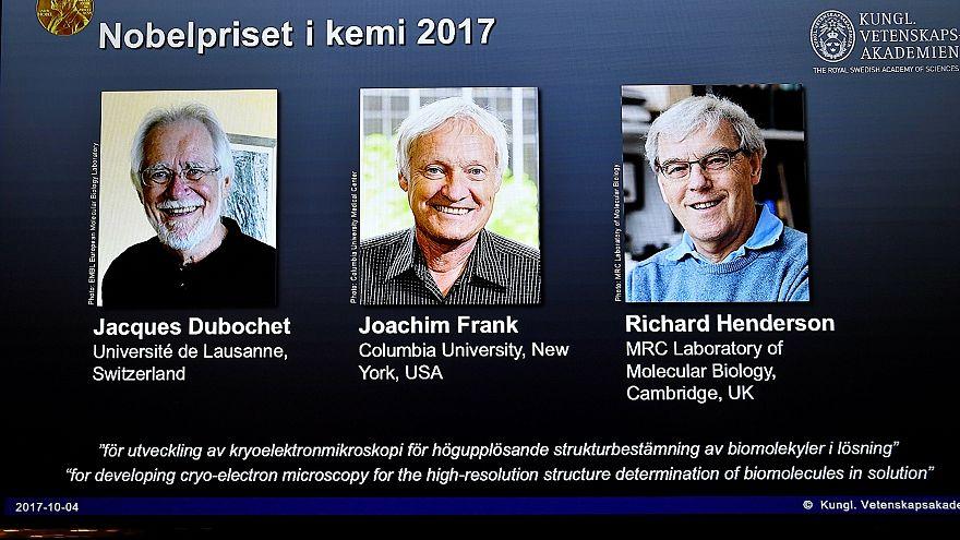 Técnicas para observar biomoléculas galardoadas com Nobel da Química