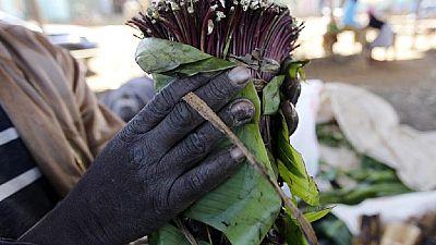 Somalia Bakool region bans khat for negative effect on al-Shabaab combat