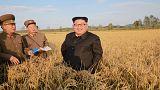 كوريا الشمالية تخسر حلفاءها في أفريقيا وأخرهم السودان