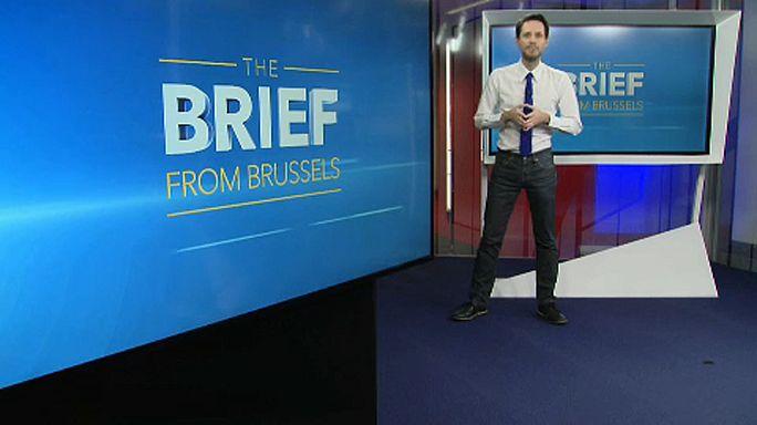 The Brief from Brussels: AB'de glifosat tartışması devam ediyor