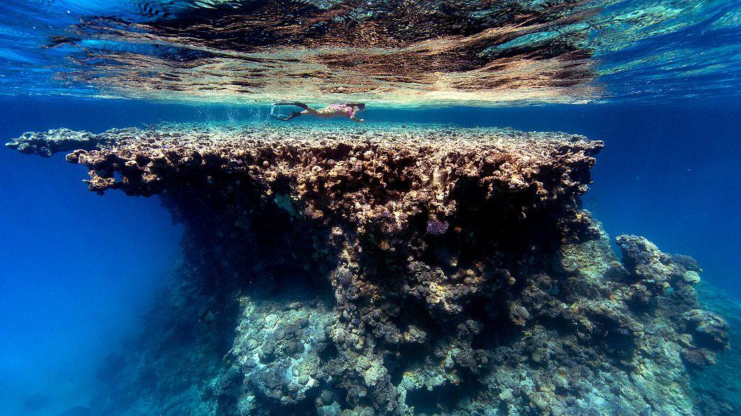 UE: satélites al servicio de la protección de los océanos