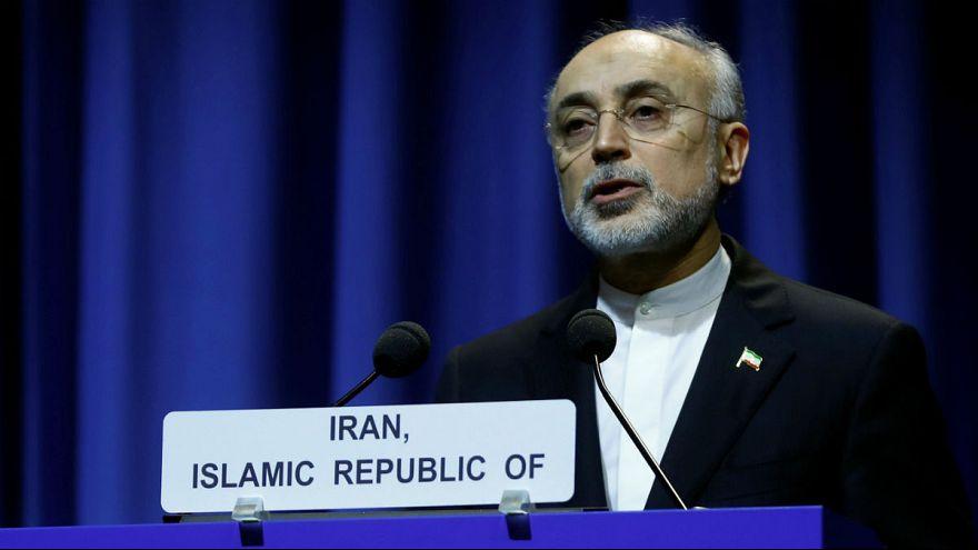 علی اکبر صالحی:  توافق برجام قابل مذاکره مجدد نیست