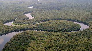 Congo : six mois pour la mise en place effective du fonds bleu du bassin du Congo