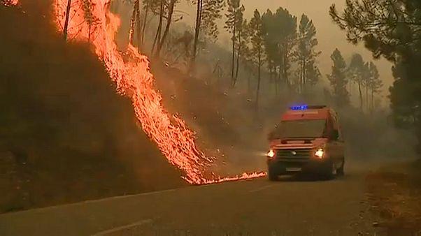 Exército português envia 200 militares para combater as chamas