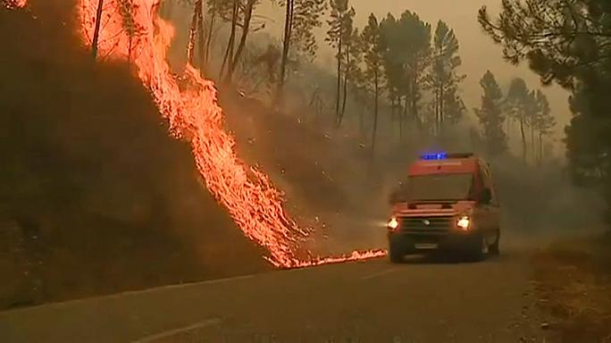 Eleven active wildfires rage in Portugal