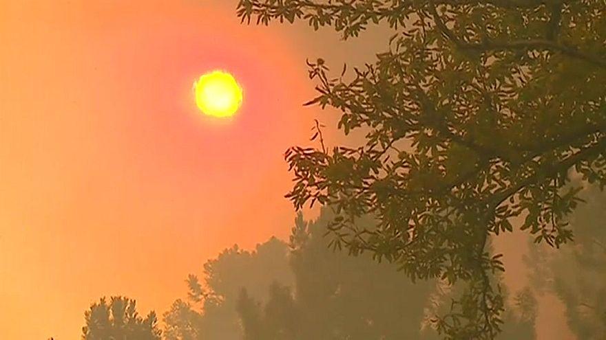 Португалия: аномальная жара и лесные пожары