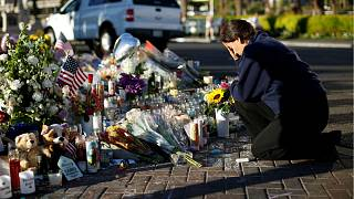 View: US states should choose gun sanity for themselves