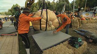 Фестиваль тыквы в Людвигсбурге