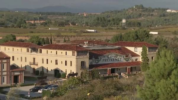 Cava producers fear Catalonia independence