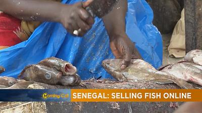 Digital solution to buying Fish in Senegal [The Morning Call]