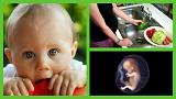 دانشمندان: ذائقه و سلیقه غذایی در رحم مادر شکل میگیرد