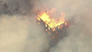 Brucia ancora la California, almeno 17 morti
