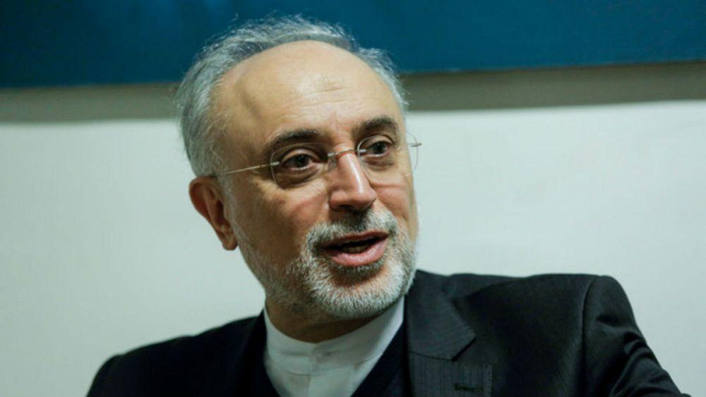 صالحی: تروریستی خواندن سپاه را اعلام جنگ تلقی می کنیم