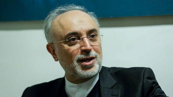 صالحی: تروریستی خواندن سپاه را اعلام جنگ تلقی میکنیم