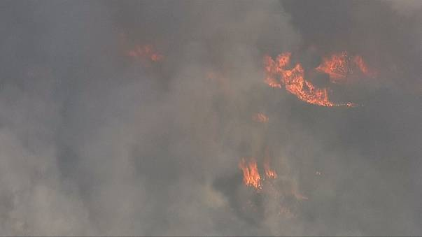 Пожар в Санта-Розе