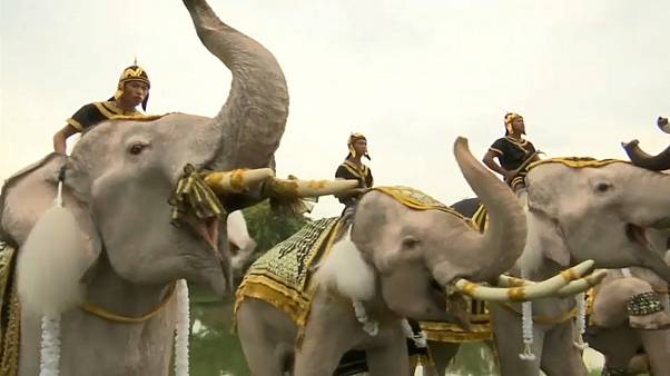 Elephants help mark year since Thai kings' death