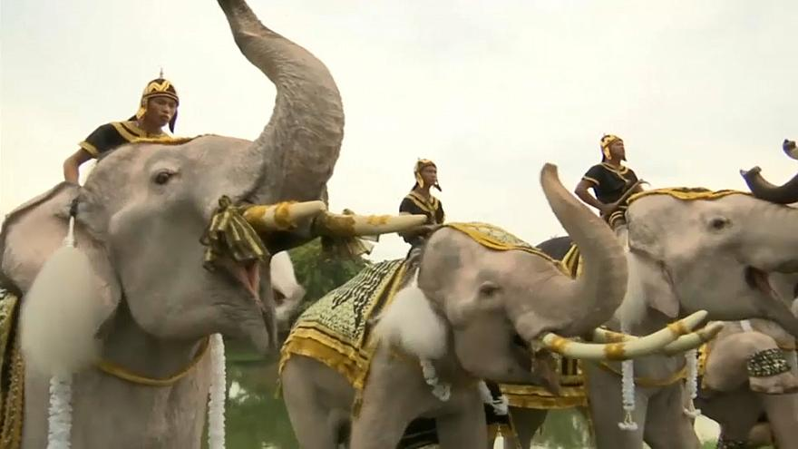 Elephants help mark year since Thai kings' death