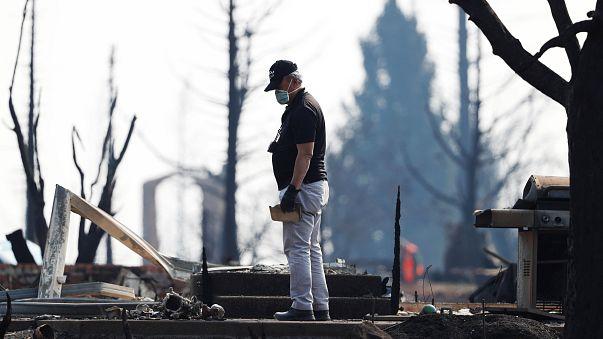 Kaliforniya'da orman yangınları 36 can aldı