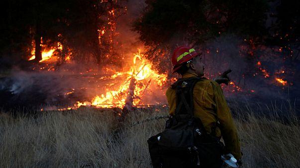 La Californie brûle : 40 morts