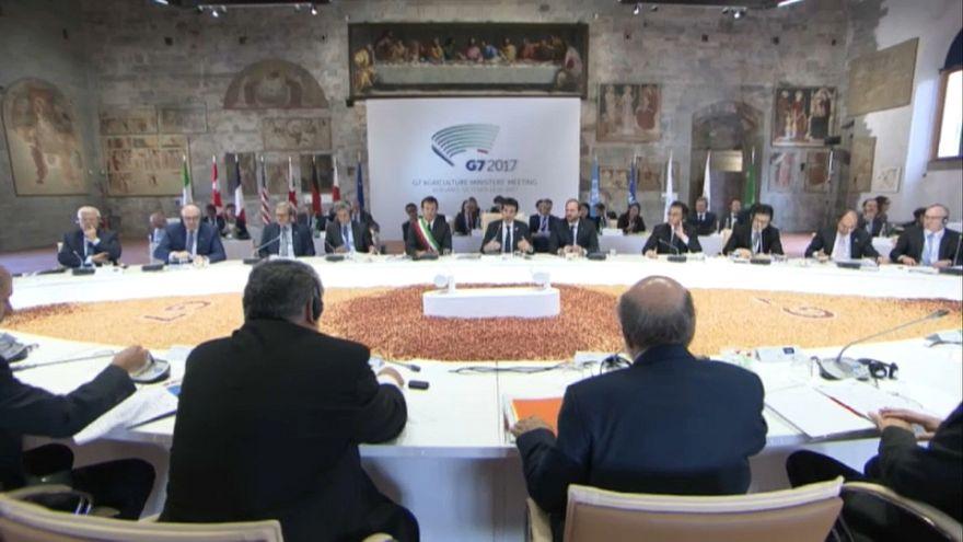 G7 Agricoltura: 500 milioni fuori dalla fame entro il 2030