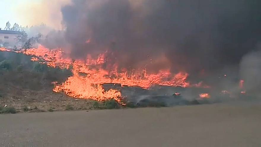 """""""Der schlimmste Tag des Jahres"""": Waldbrände in Portugal"""