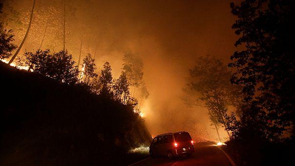 Arde Galicia por incendios criminales: cuatro muertos y miles de hectáreas quemadas
