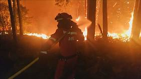 Miles de personas luchan contra las llamas en Galicia