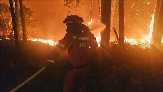 Spain battles against deadly forest fires