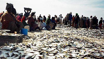 Sénégal : Aywajieune, une plateforme en ligne pour limiter des invendus de poisson